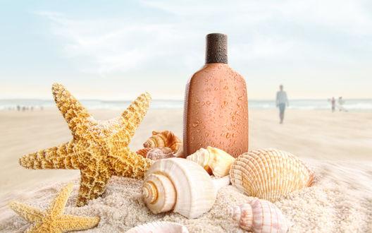 Обои Бутылка, ракушки и морская звезда на пляже, в далеке ходят люди