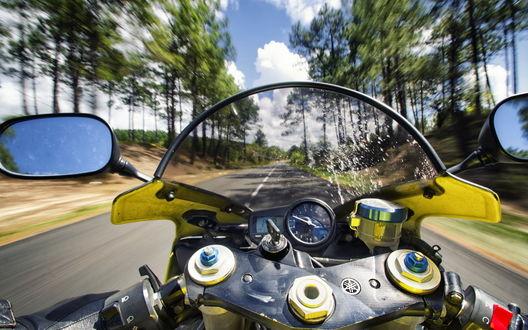 Обои Желтый мотоцикл мчится по дороге мимо деревьев