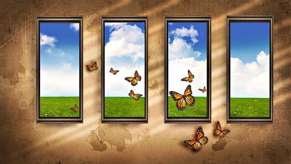Обои Бабочки вылетают из окон