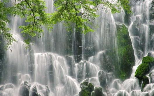 Обои Водопад в лесной чаще