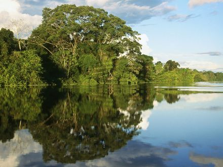 Обои Узкое место в реке Амазонке / Amazonas