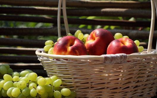 Обои Персики и виноград лежат в корзине