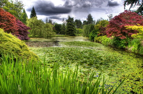 Обои Ботанический сад Ван Дусена, Ванкувер, Канада / Van Dusen Botanical, Vancouver, Canada