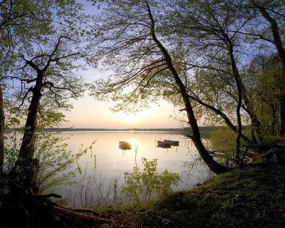 Обои Вид на озеро и лодки с берега, на котором растут деревья
