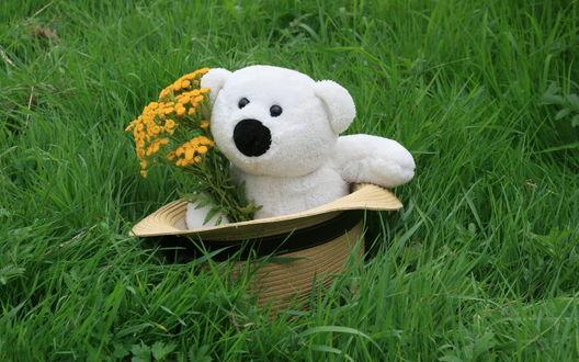 Обои Шляпа в траве с плюшевым белым мишкой, который держит букет из желтых полевых цветов