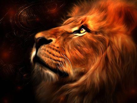 Обои Красиво нарисованный загадочный рыжий лев