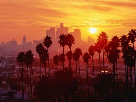 Обои Закат в Лос-Анджелесе, Калифорния