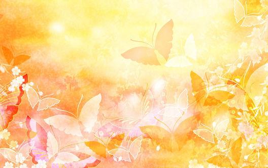 Обои Бабочки и цветы на жёлтом солнечном фоне