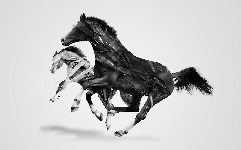 Прикольные картинки 3d природа и животные