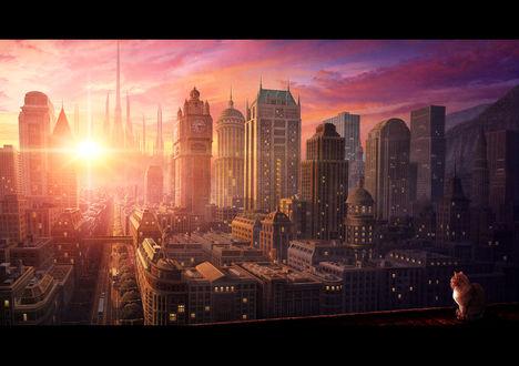 Обои Кот сидит на крыше и смотрит утренний Лондон, залитый лучами восходящего солнца
