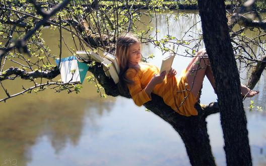 Обои Девушка в желтом платье расположилась на дереве над озером и читает книжки