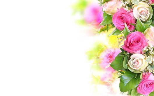 Обои Букет из розовых и белых роз