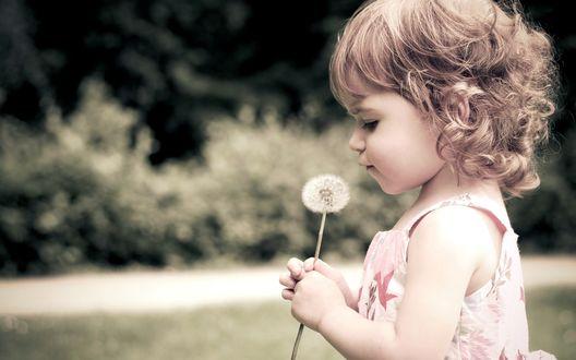 Обои Маленькая девочка с одуванчиком в руках