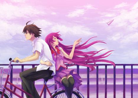 Обои Senjougahara Hitagi / Хитаги Сендзёгахара едет на велосипеде вместе с Коёми Арараги / Araragi Koyomi и пускает бумажный самолётик, аниме Истории монстров / Истории чудовищ / Монстрассказы / Bakemonogatari