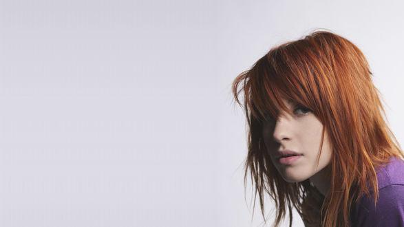 Обои Портрет рыжеволосой Hayley williams / Хейли Уильямс на белом фоне