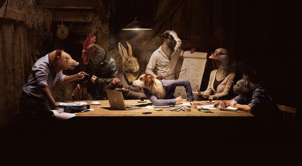 Обои Люди с головами животных осуществляют мозговой штурм сидя за столом. Свинья, петух, кролик, собака, козёл, гусь и кот рассматривают бумаги, графики, ноутбук Apple