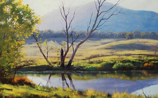 Обои Тихий пруд в поле, вдалеке виднеются горы