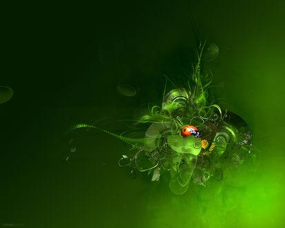 Обои Божья коровка в абстрактном клубке с травяным мотивом