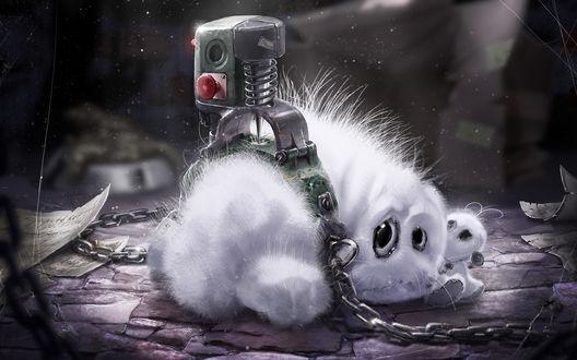 Обои Белый пушистый зверек сидит со своим детенышем на цепи в темнице
