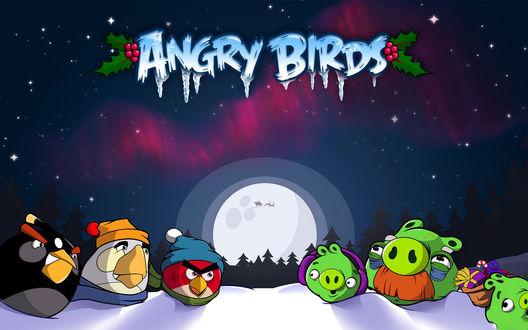 Обои Знаменитая игра Angry Birds / Злые птицы, оформленная к рождеству, птицы в шапочках и свиньи на снегу ночью, в небе на фоне луны силуэт Санта Клауса в упряжке