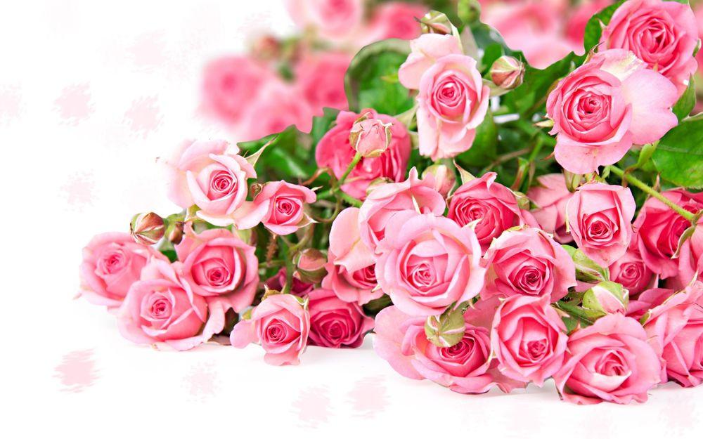 Слушать розовый букет