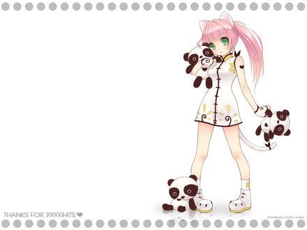 Обои Девочка-неко в платьице с плюшевыми пандами