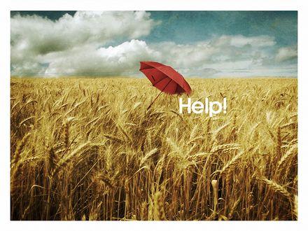 Обои Красный зонт в пшеничном поле (HELP! / Помогите! )
