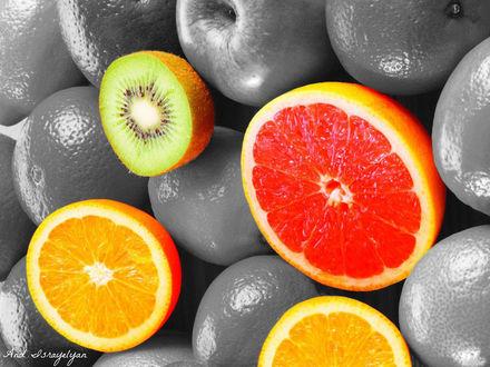 Обои Цветные фрукты среди черно-белых: грейпфрут, киви, апельсин