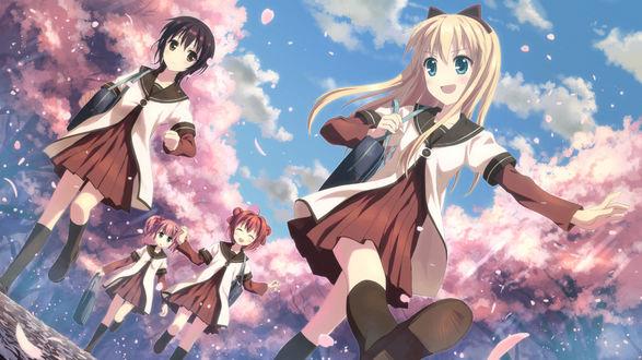 Обои Девочки из аниме Лилии на ветру / Yuru Yuri гуляют среди цветущей сакуры