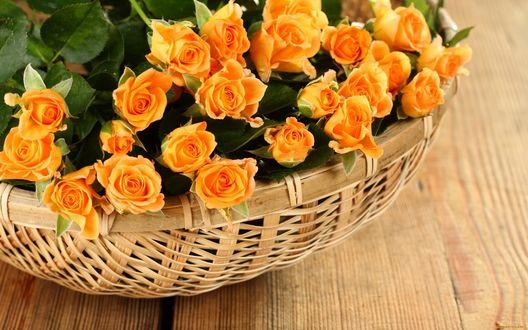 Обои Цветы в плетеной корзине, букет желтых роз