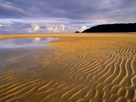 Обои Песчаный пляж во время отлива