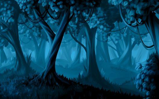 Обои Ночной лес