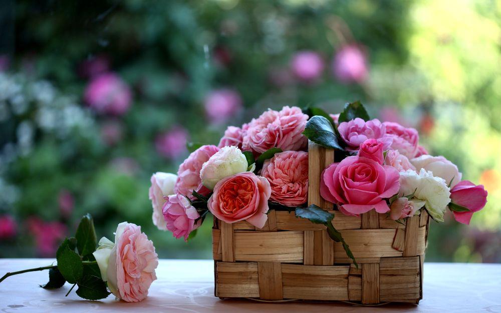 Обои для рабочего стола Плетёная корзинка с розами стоит на столе
