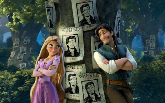 Обои Рапунцель и Флин Райдер из мультфильма Рапунцель: Запутанная история / Tangled стоят возле дерева с портретами Флина и надписью WANTED / Разыскивается