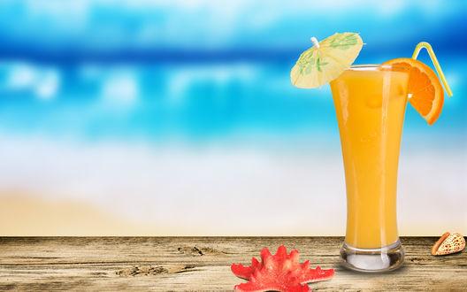 Обои Апельсиновый сок с зонтиком ракушка и морская звезда