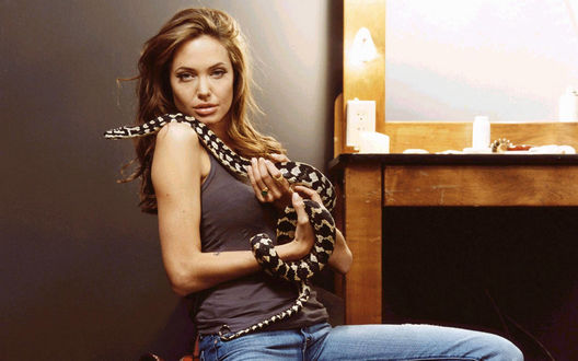 Обои Angelina Jolie / Анджелина Джоли со змеей на руках