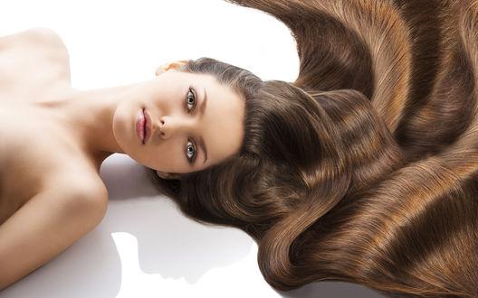 Обои Брюнетка с длинными блестящими волосами волосами на белом фоне