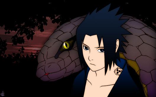 Обои Uchiha Sasuke / Саске Учиха из аниме Наруто / Naruto со змеёй