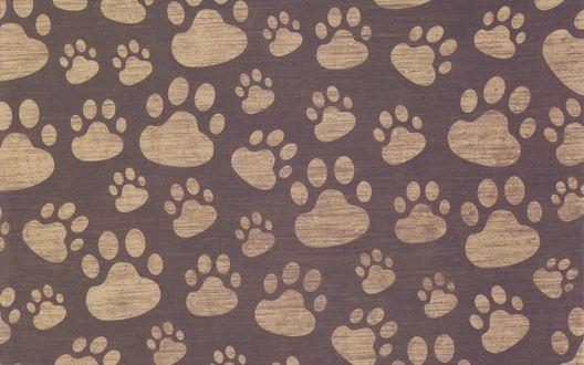Обои Собачьи следы в виде текстуры