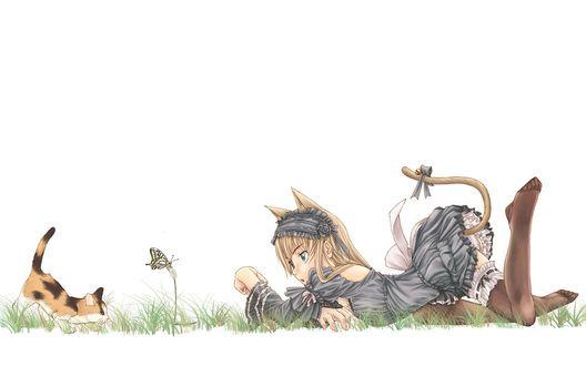 Обои Девушка-горничная с ушками играет с котенком