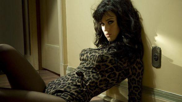 Обои Певица Katy Perry / Кети Перри сидит на полу, прислонившись к стене
