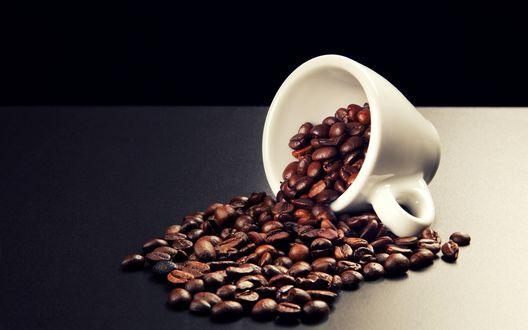 Обои Кофейные зёрна, рассыпавшиеся из белой кофейной кружки, опрокинутой набок