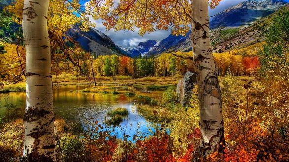 Обои Небольшое горное озеро с березами на переднем плане, окруженное деревьями с осенней листвой, на фоне гор и неба, покрытого свинцовыми тучами