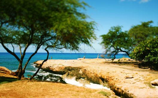 Обои Морское побережье с зеленым кустарником, стоящими на берегу людьми, на фоне голубого неба, с эффектом тилт шифт / tilt shift