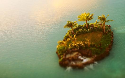 Обои Небольшой остров с пальмами среди водного пространства, с эффектом тилт шифт / tilt shift