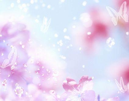 Обои Нежные цветы с очертанием бабочек