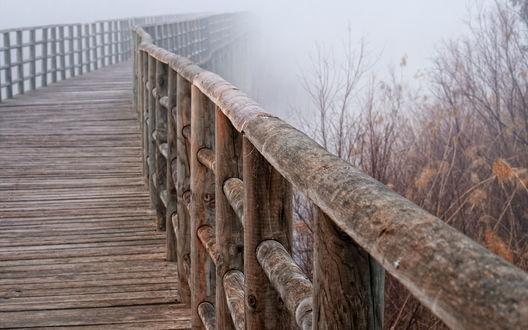 Обои Мост с толстыми деревянными перилами, уходящий в туман вдоль сухих кустов