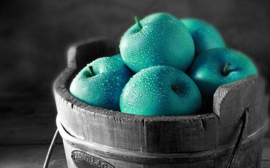 Обои Корзина яблок