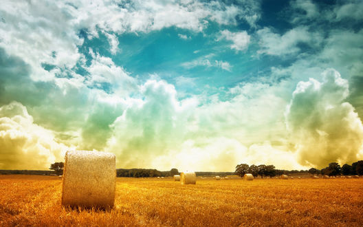 Обои Снопы в поле под облачным небом