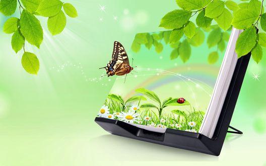 Обои Листы бумаги над подставке на которых сидит бабочка, на верхнем листе нарисована поляна цветущих  ромашек и  радуга.